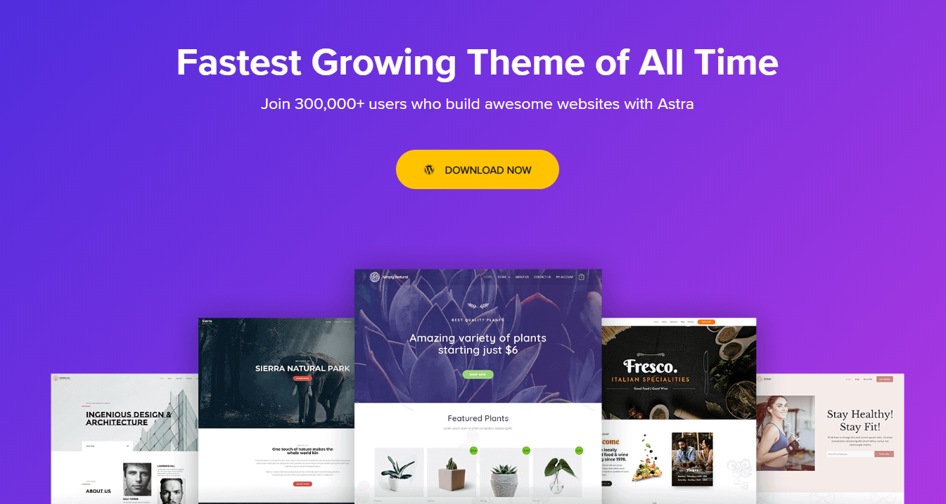 Astra WordPress Themes for Blogs